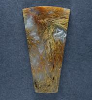 Gorgeous Designer Cabochon of Nipomo Sagenite Agate  #17399