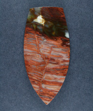 Unusual Tuscarora Petrified Wood Designer Cabochon  #17422