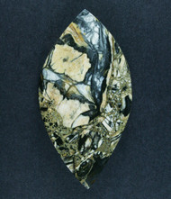 Gorgeous Pacific Picasso Jasper Designer Cabochon  #17530