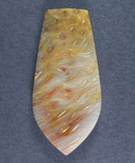 Gorgeous Lousiana Petrified Palm Wood Designer Cabochon