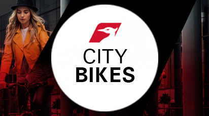 Raleigh City Bikes