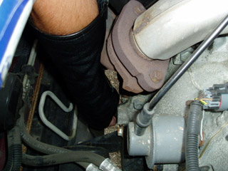 arm-chaps-hot-exhaust-protection.jpg