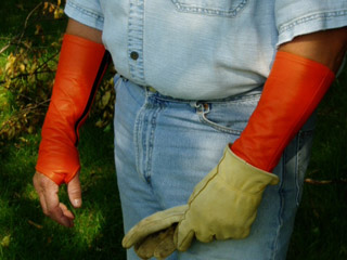 arm-chaps-tree-service-safety-orange.jpg