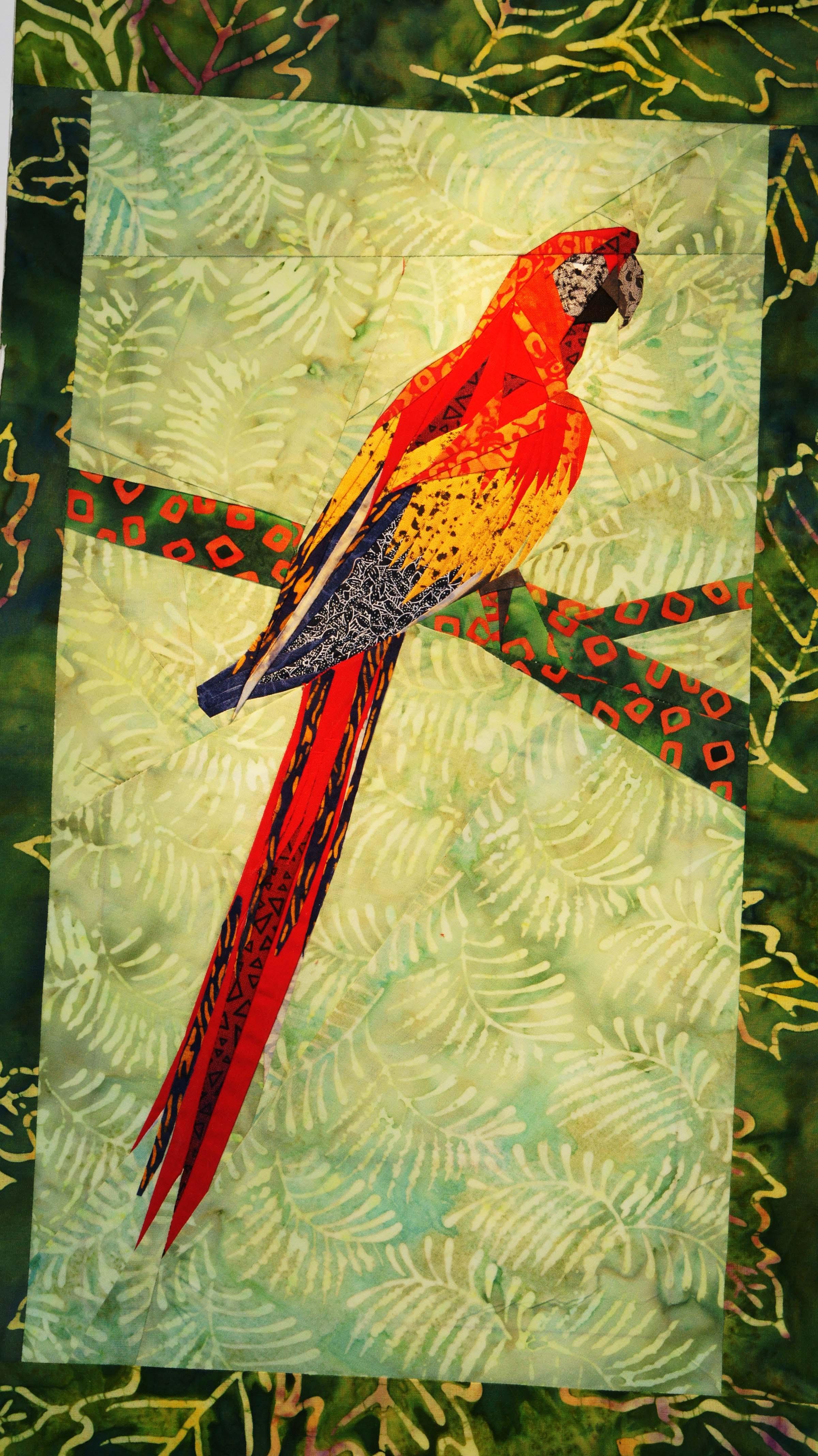 dsc01616-red-macaw.jpg