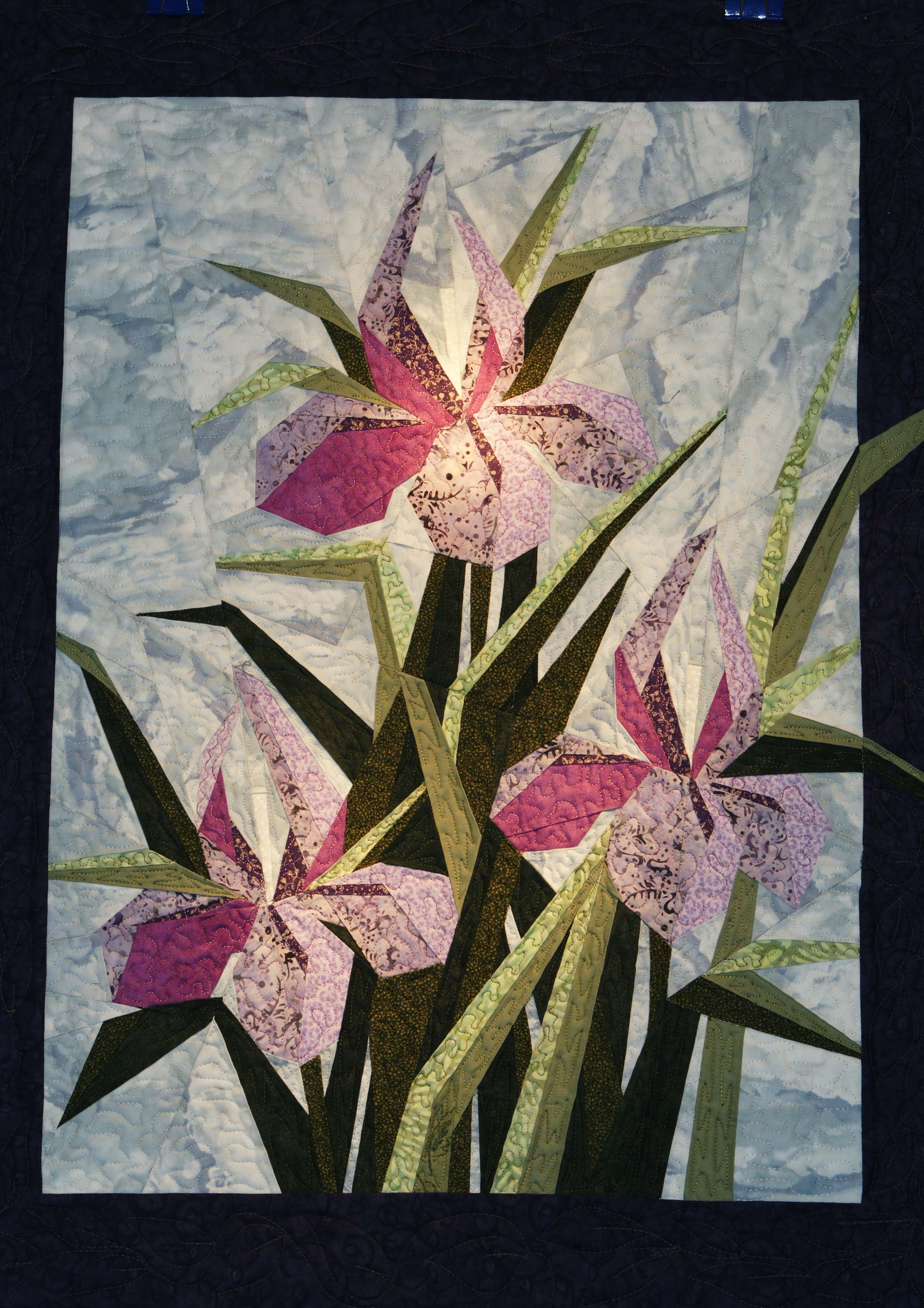 dsc01633-iris-garden.jpg