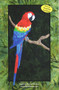 Parrot Picture Paper Piecing Quilt Front Cover