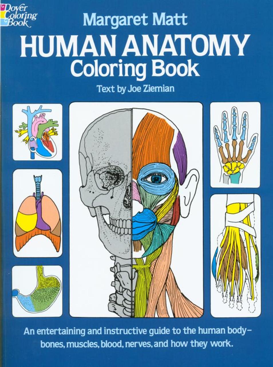 Kaplan Medical Anatomy Coloring Book
