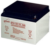 Enersys Genesis NP24-12B Battery - 12 Volt 24.0 Amp Hour