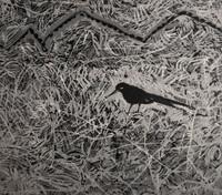 """Zaida Del Rio #325. """"Estrategia de vuelo,"""" 1988. Screen print edition 42 of 50. 20 x 27.5 inches.  SOLD!"""