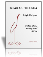 Star of the Sea (band)