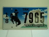 WYOMING Bucking Bronco Devils Tower Truck License Plate 18 7965