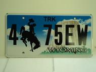 WYOMING Bucking Bronco Devils Tower Truck License Plate 4 75EW