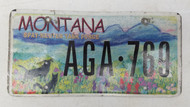 Expired MONTANA Spay-Neuter Task Force License Plate AGA-769 Dog Cat Meadow, Painting