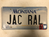 2000 (2004 Tag) MONTANA Big Sky License Plate JAC-RAL Cow Skull