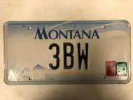 2000 (2006 Tag) MONTANA Big Sky License Plate 3BW Cow Skull