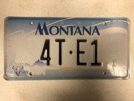 2000 MONTANA Big Sky License Plate 4T-E1 Cow Skull