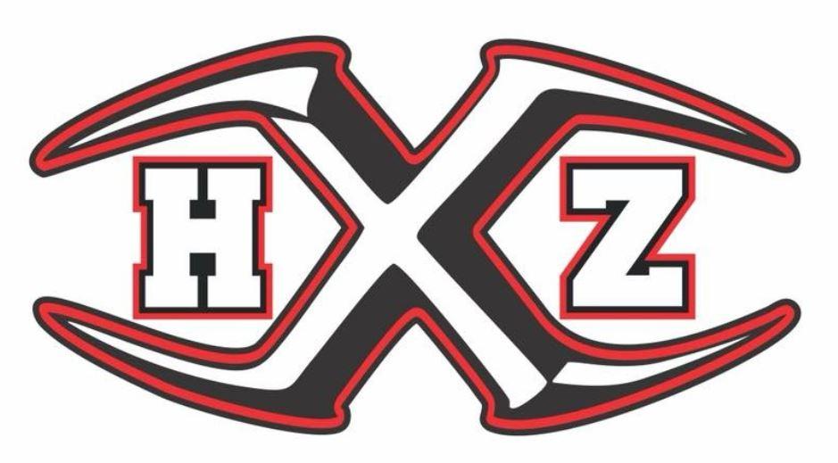 hitting-zone-logo.jpg