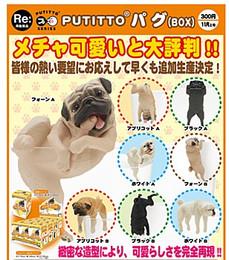 PUTITTO series - Pug 12 Pcs Box