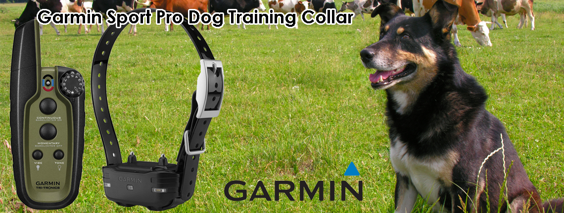 Dog Tracking Collars Nz