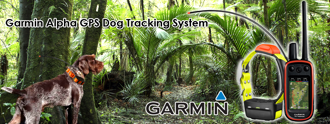 Nz S Best E Collars Gps Dog Tracking Dog Training Amp Dog