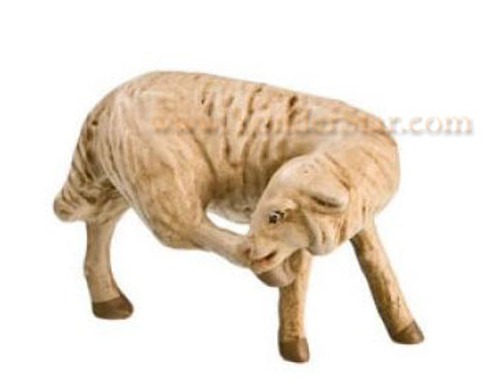 Marolin Nativity Sheep Scratching 12 cm Scale