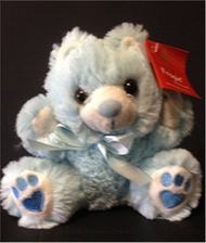 Small Blue Teddy Bear
