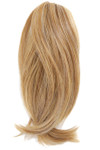 HairDo Extension - 10 Inch Claw Clip Pony with Braid (#HDCCPB) product 1
