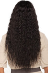 Vivica A Fox Wig - Campbell Back 1