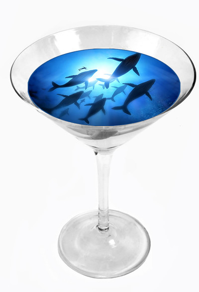 Snowy River Cocktail Toppers Whales (1x6Pack)