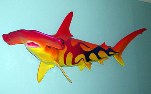 Hammerhead Shark 54 inches full mount with custom flame paint