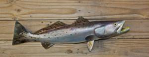 Seatrout 22 inch Full Mount Fiberglass Fish Replica