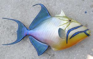 Qeen Trigger fiberglass fish replica