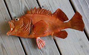 Acadian Redfish 18 inch half mount fiberglass fish replica