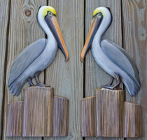 Pair of pelicans