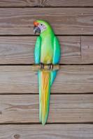 Military Macaw 27 inch half mount fiberglass replica