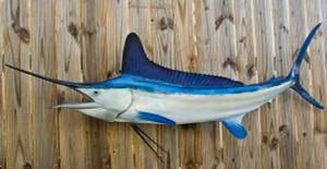 White Marlin 85L inch full mount fiberglass fish replica