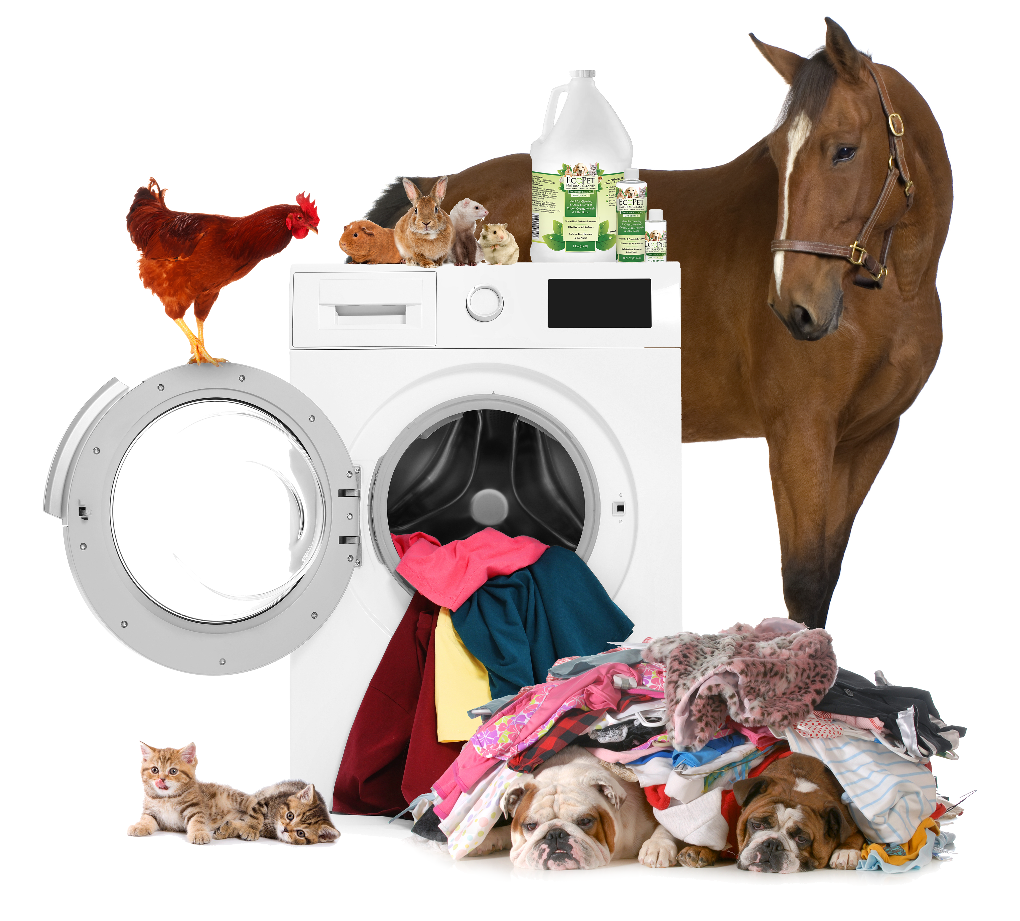 all-animals-on-washer.png