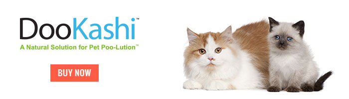 DooKashi For Cats Mini Banner