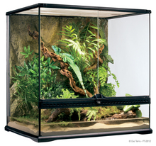 "Exo Terra Natural Terrarium Medium 60 x 45 x 60 cm / 24"" x 18"" x 24"")"