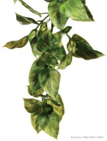 Exo Terra Hanging Plastic Plant - Amapallo
