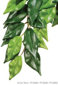 Exo Terra Hanging Silk Plant - Ficus