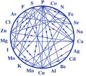 Element Relation Chart