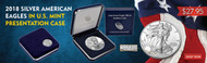 2018 Silver American Eagle in Mint Presentation Case