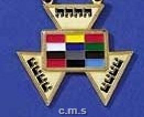 Royal Arch High Priest  Lapel pin