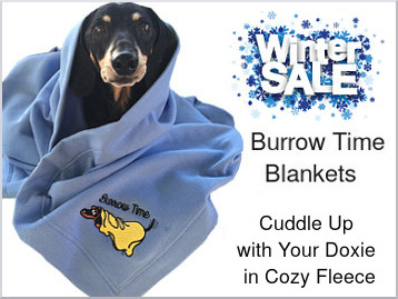 blanket-donovan-border-winter-sale-text-use.jpg