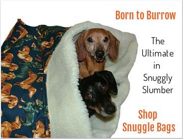 dachshund-snuggle-bag-border-3-font-update.jpg