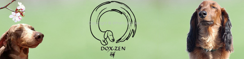 Dox-Zen Yoga Inspired Lounge Wear for Dachshund Lovers
