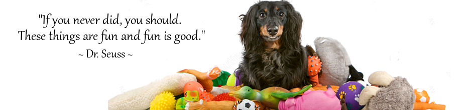 Fun Dog Toys for Dachshunds