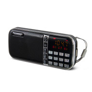 Buddee Digital Clock Radio AM/FM with USB Port - BD903204-BK