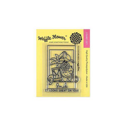 Waffle Flower Clear Stamps, Picture Perfect - 653341230836